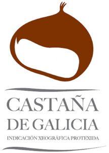 castaña de galicia
